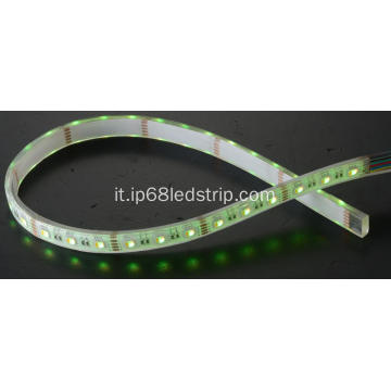 Tutti in uno SMD5050 60Leds RGBW trasparente Led Strip Light